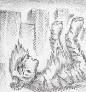 Поэтапно рисовать котов воителей карандашом 3