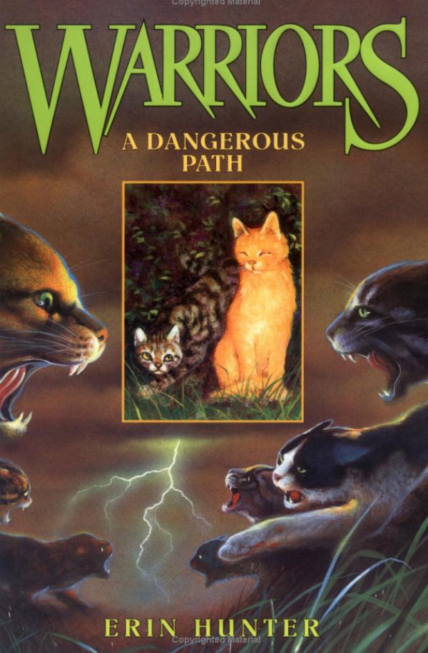 http://cat-warriors.narod.ru/books/dangerous_path.jpg