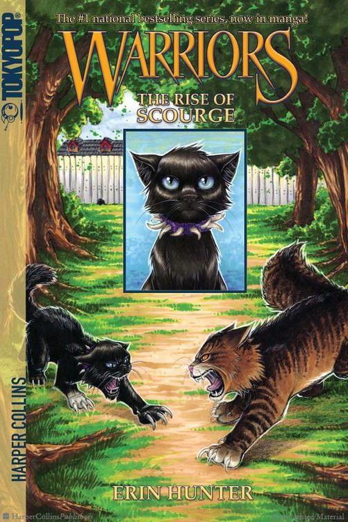Картинки котов воителей с 23 февраля